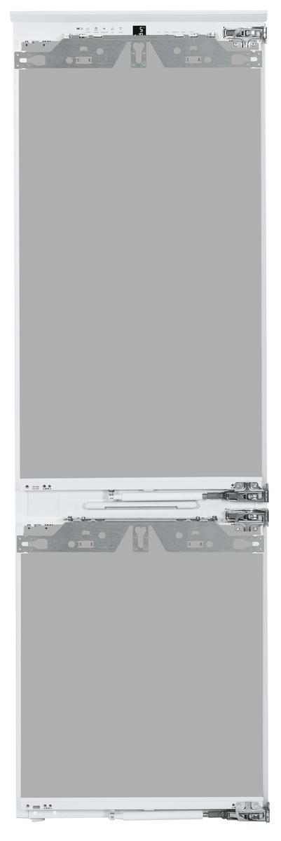 ICBN203376-1.jpg