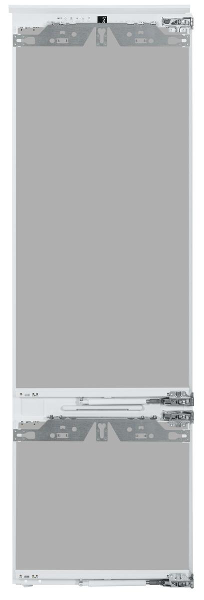 ICBP203266-1.jpg