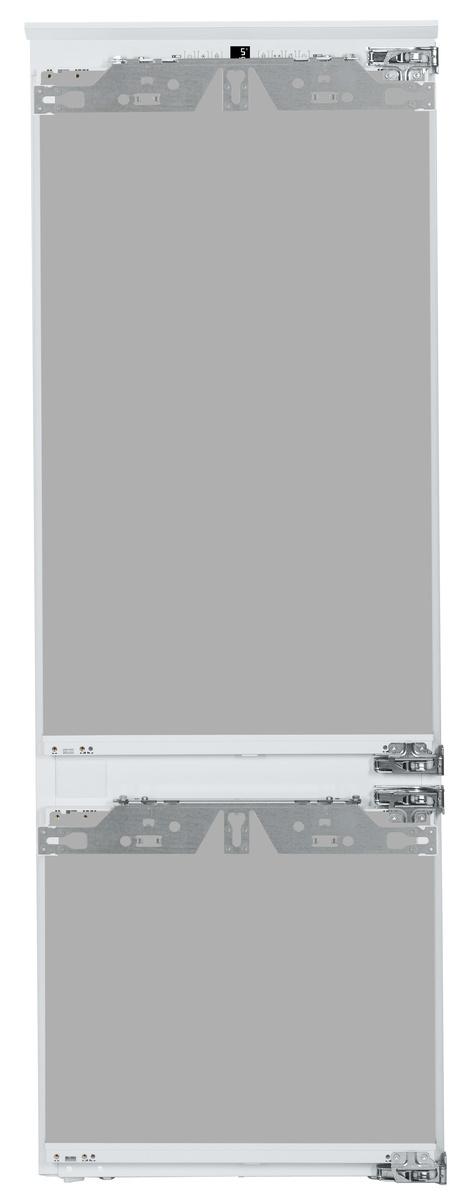 ICP202924-1.jpg